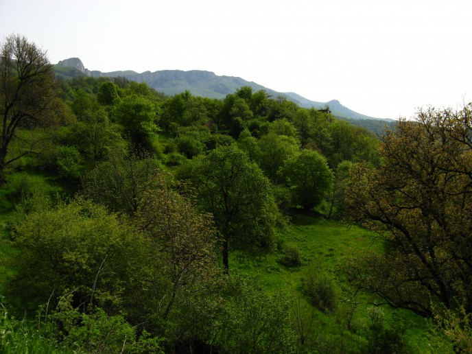 The carpeted hills far up the valley which hosts a perfectly preseved church of the early Christian era
