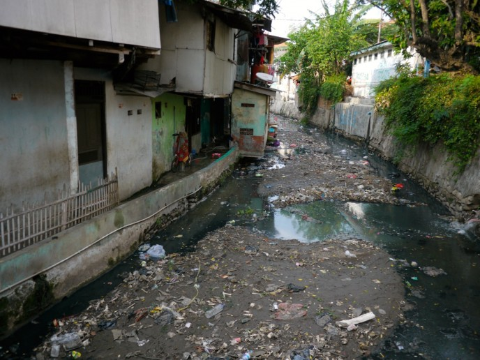 Canals that have become stagnant ponds...